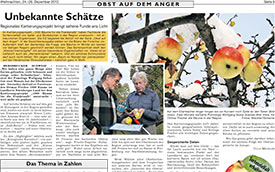 2012, Dezember: Hersbrucker Zeitung