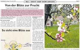 2013, Mai/Juni: Hersbrucker Zeitung